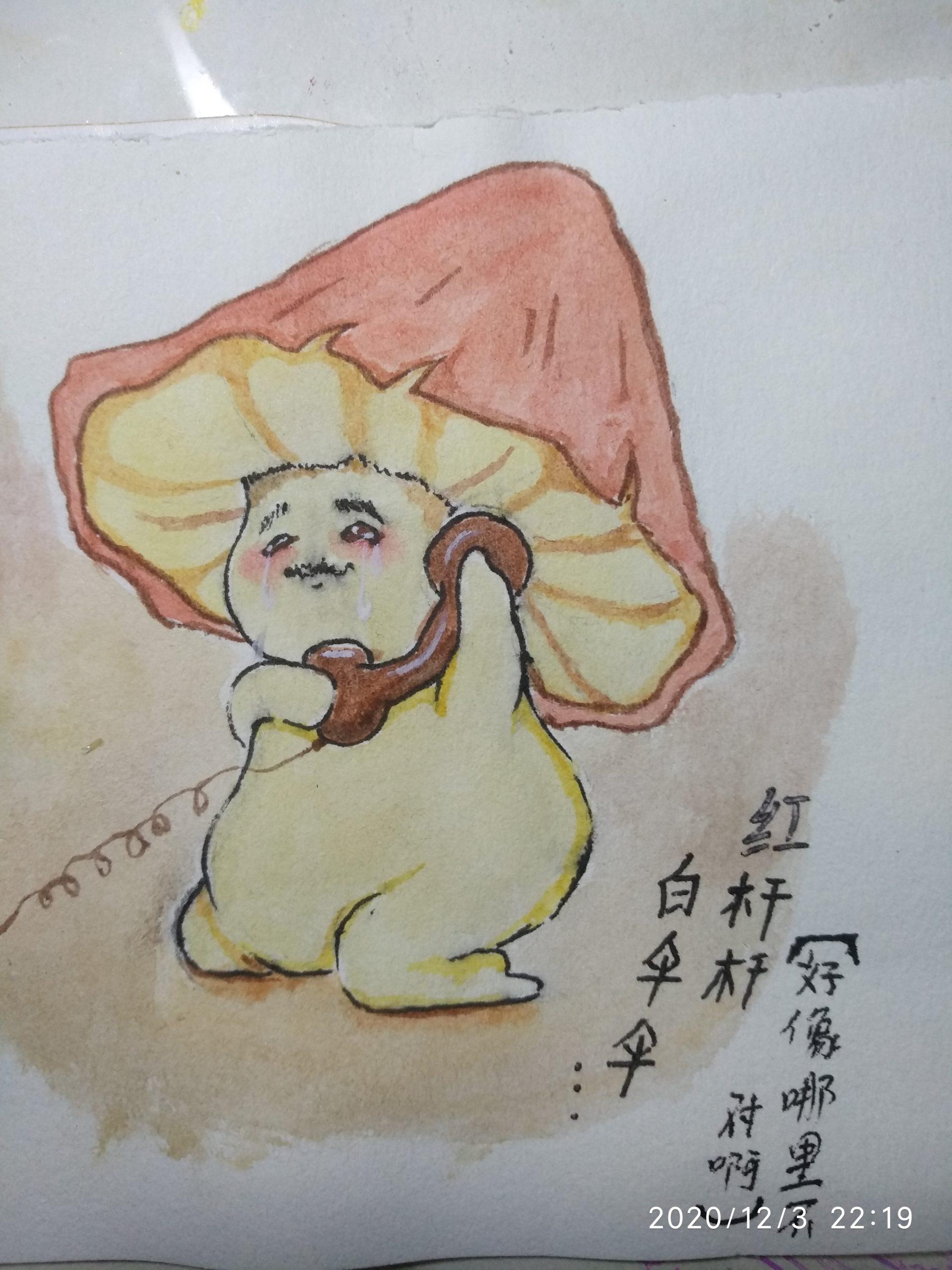 meng, chunyan